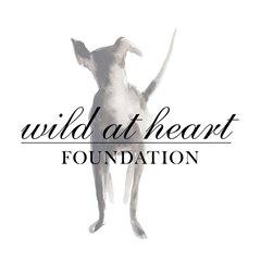 Educate Children About Animal Welfare Educate children about animal welfare